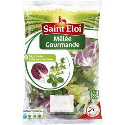 Salade mêlée gourmande