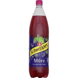 Soda Mûre aux saveurs de 4 mûres