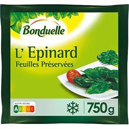 L'Epinard, feuilles préservées
