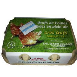Gros œufs frais de poules elevées en plein air categorie a