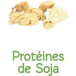 Protéïnes de soja BIO en VRAC