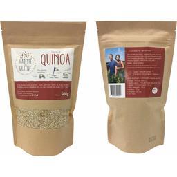 Quinoa blond du Berry