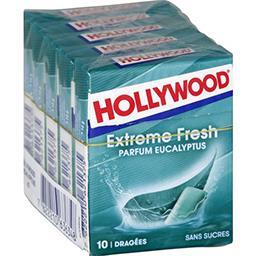 Hollywood Chewing-gum Extreme Fresh parfum eucalyptus les 5 boites de 14 g