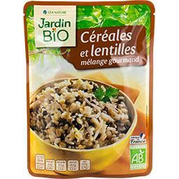Céréales et lentilles BIO, mélange gourmand