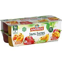 Sans Sucres Ajoutés - Dessert de fruits 4 variétés