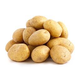 Pomme de terre de consommation BLONDE, à chair ferme