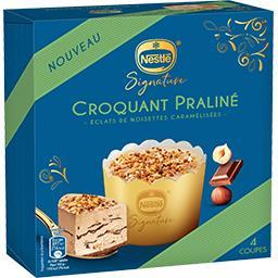 Dessert glacé Croquant Praliné éclats de noisettes
