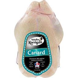 Canard PAC
