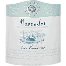 Muscadet - les Embruns - vin blanc