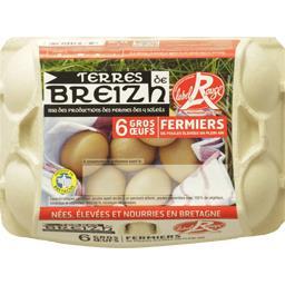 Terres de Breizh Œufs gros fermiers Label Rouge poules élevées en ple... la boite de 6 œufs