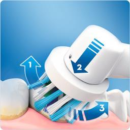 Brosse à dents électrique pro 600 crossaction par br...