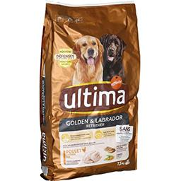 Croquettes pour Labrador & Golden Retriever