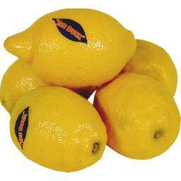 Citrons JAUNES NON TRAITES