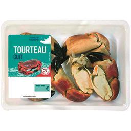 Pinces de TOURTEAUX cuites, 12/20
