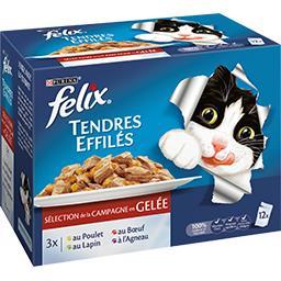 Tendres effilés en gelée viandes pour chats