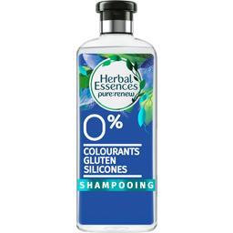 Pure:renew - Shampooing Eau Micellaire et Gingembre Bleu