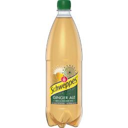 Soda Ginger Ale aux extraits de gingembre