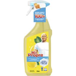 Nettoyant multi-usages, citrons d'été pour surfaces ...