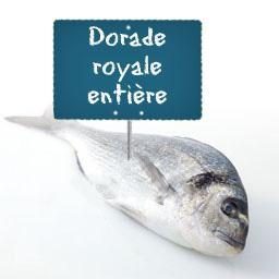 DORADE royale entière