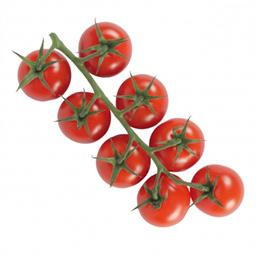Tomates COCKTAIL en GRAPPE