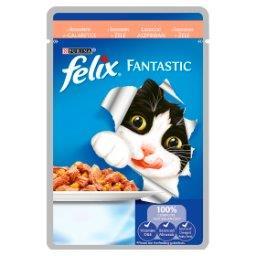 Fantastic Karma dla kotów z łososiem w galaretce