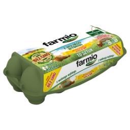 Jaja z wolnego wybiegu od kur karmionych paszą z soją bez GMO L 10 sztuk