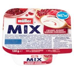 Mix Jogurt z wsadem owocowym