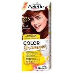 Color Shampoo Szampon koloryzujący Kasztan 236